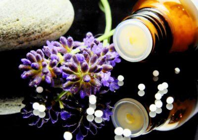 Pharmaceutical Start Up